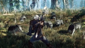 The-Witcher-3-Screenshot-Wolves
